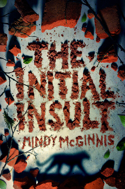 February Book Releases The Initial Insult by Mindy McGinnis